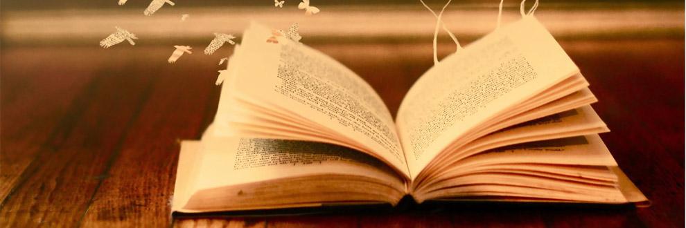 books01_900x330